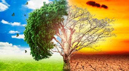 ¿Qué hacer para evitar una catástrofe climática?
