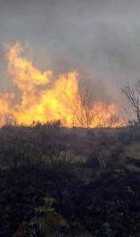 Declaran calamidad pública por incendios en Norte de Santander