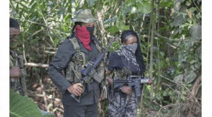 Fuerzas Militares colombianas aseguran que gran parte del ELN se refugia en Venezuela